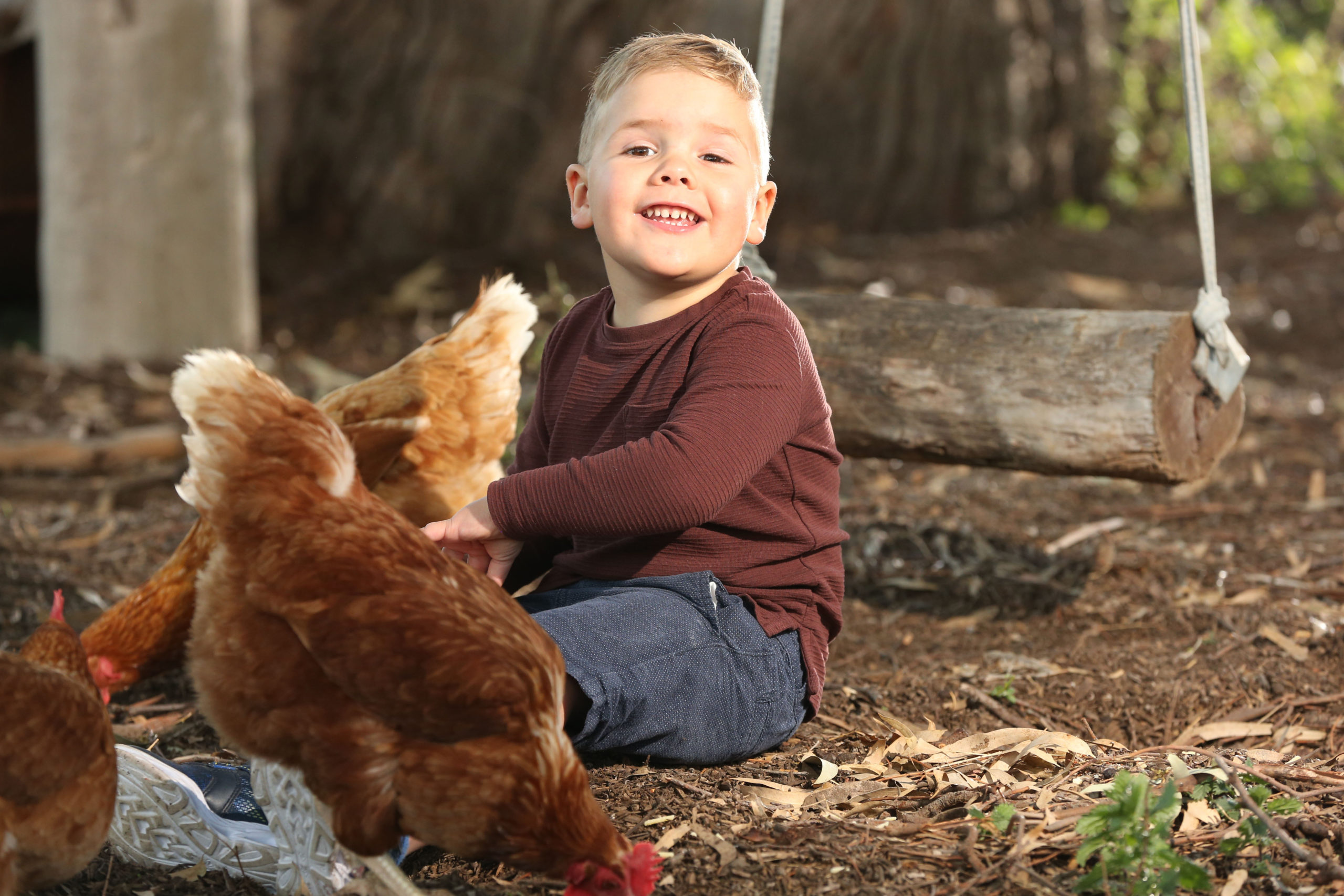 William sitting on the ground with a chicken